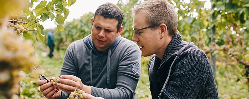 Christian und Stefan Braunewell