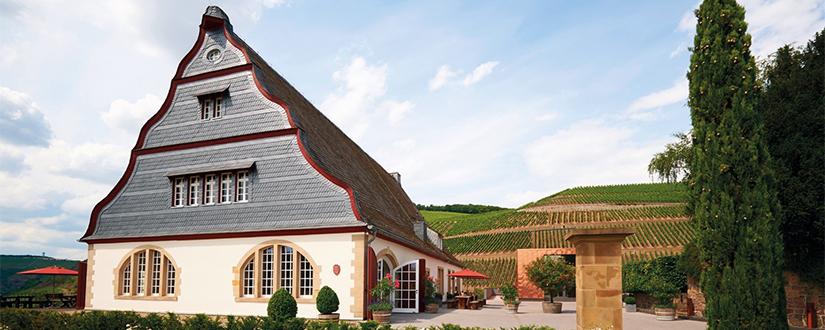 Gut Hermannsberg • Wein kaufen