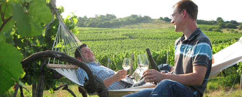 Weingut Braunewell • Wein kaufen