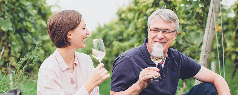 Weingut Hauck • Wein kaufen | Vicampo.de