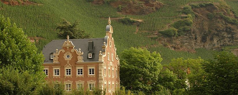 Weingüter Mönchhof & Joh. Jos. Christoffel Erben • Wein kaufen