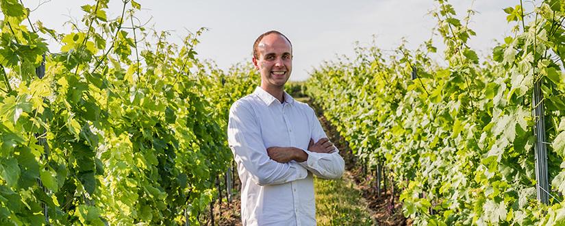 Weinmanufaktur Weyer • Wein kaufen